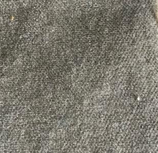 velours unique tilleul-taupe 100% coton