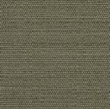 tarifa havane 100% coton